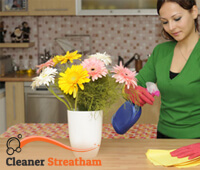 domestic_cleaning2