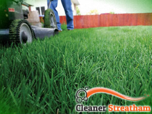 grass-cutting-services-streatham